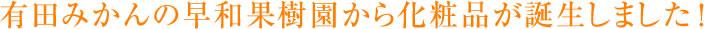 有田みかんの早和果樹園から化粧品が誕生しました